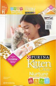 Kitten Chow Nurture Dry Cat Food