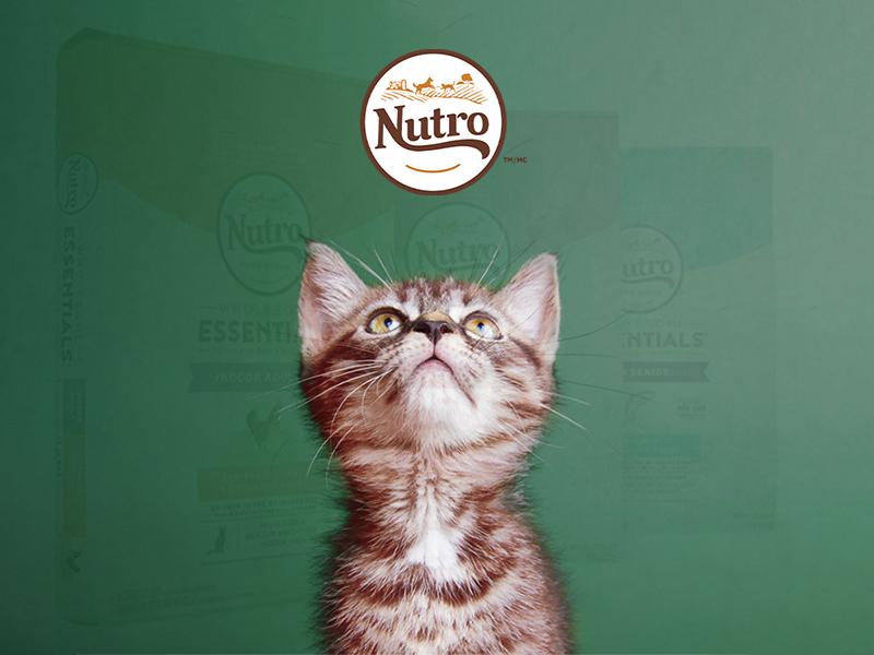 natural-cat-food-Review