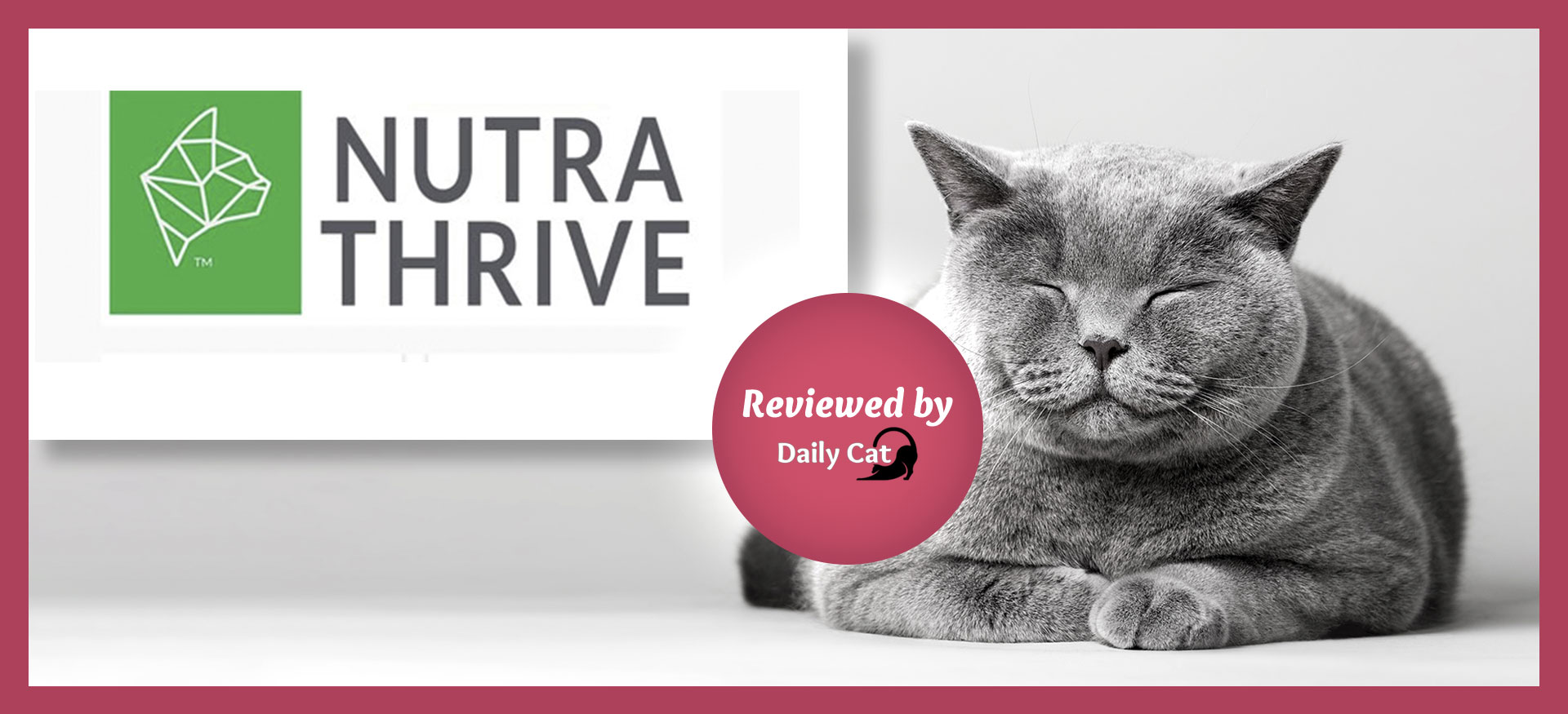 The Daily Cat-brand-Nutra Thrive Cat Food Review Graphic
