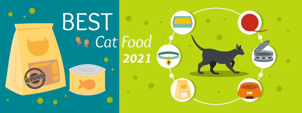 The Daily Cat - Best Cat Food Graphic