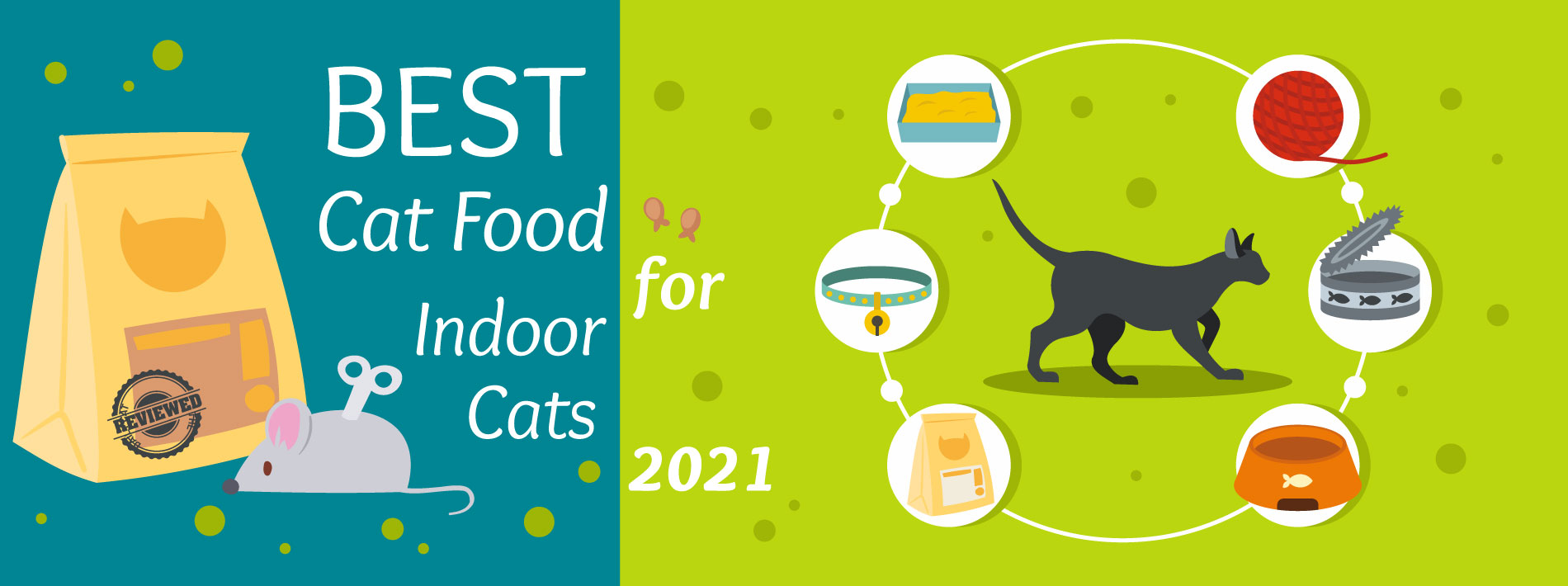The Daily Cat - Best Cat Food for Indoor Cats Graphic