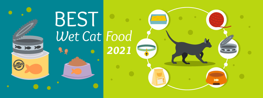 The Daily Cat - Best Wet Cat Food Graphic