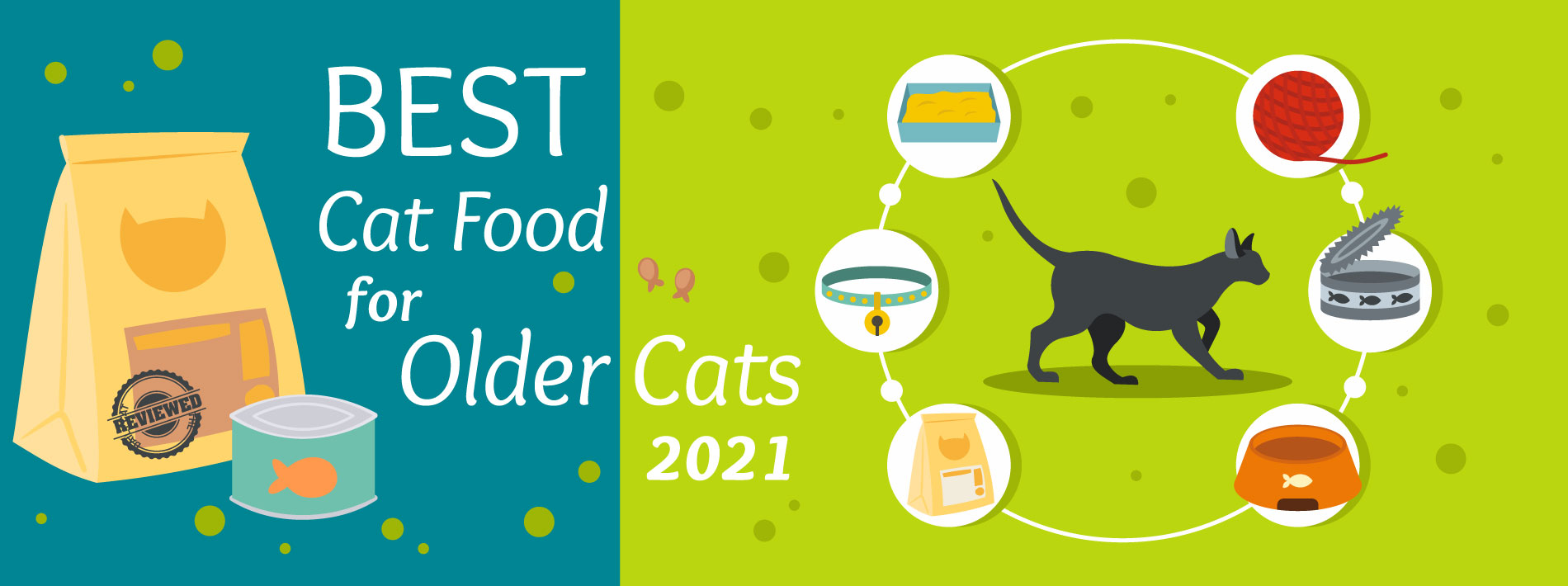The Daily Cat - Best Cat Food for Older Cats Graphic
